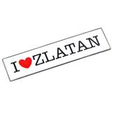 I love Z Magnet